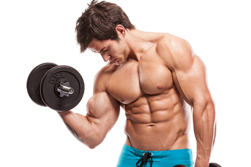 Muscle Are You Able To Really Build